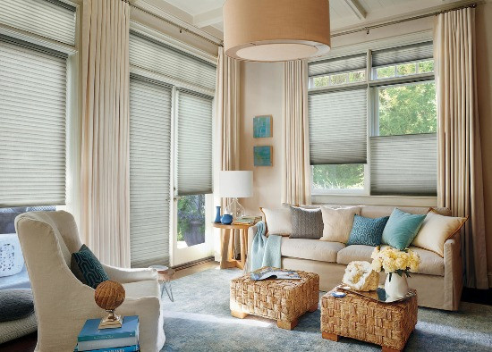 Living room with duette shades.