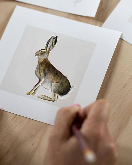 hare website .jpg