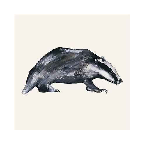 Badger | Meles Meles