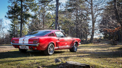 Mustang fast back