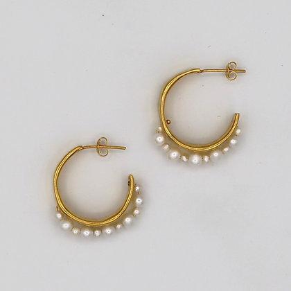 Golden Rush Hoop Earrings
