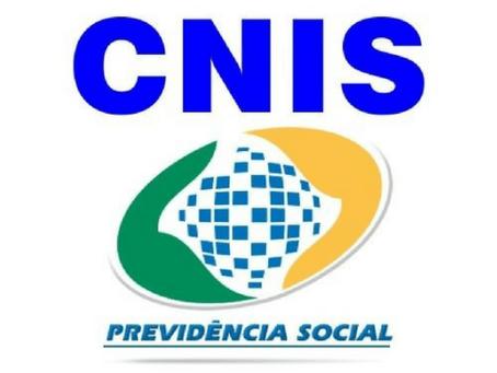 CNIS (Cadastro Nacional de Informações Sociais): o que é, para que serve e como entender.