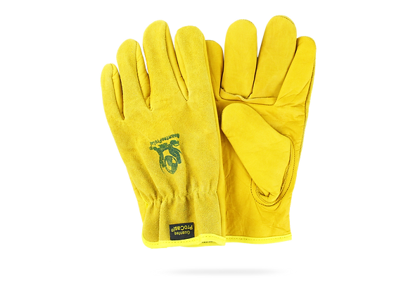 COMBINED GLOVE TYPE ProCasi