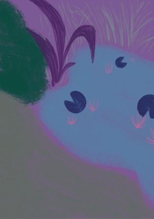 secretgardennn2.jpg
