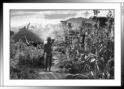 12 02 Atardecer en Saba Etiopia 2014
