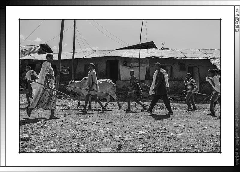 6 06 Pastores amhara acudiendo al mercado en Zege Etiopia 2016