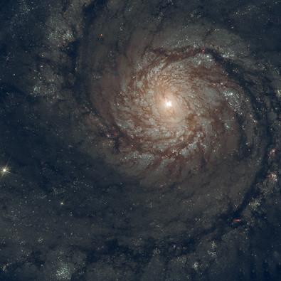 Astro (9).jpg