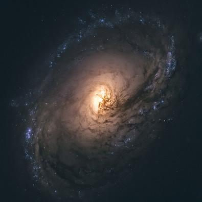 Astro (13).jpg
