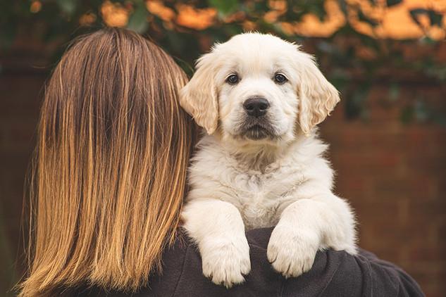 Pets (66).jpg