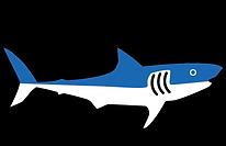 Shark Logo.png