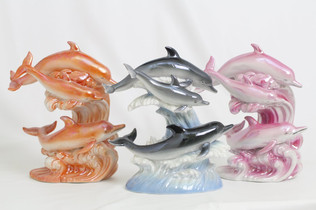 Dolphin Selection