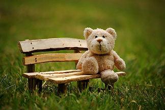 teddy-2977694_1280.jpg