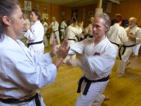 Curso de Karate en el Hombu Dojo