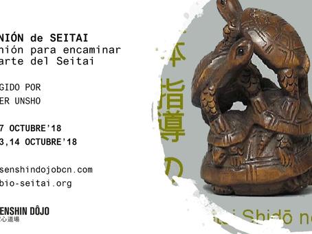 Reunión de SEITAI en Barcelona - Octubre 2018
