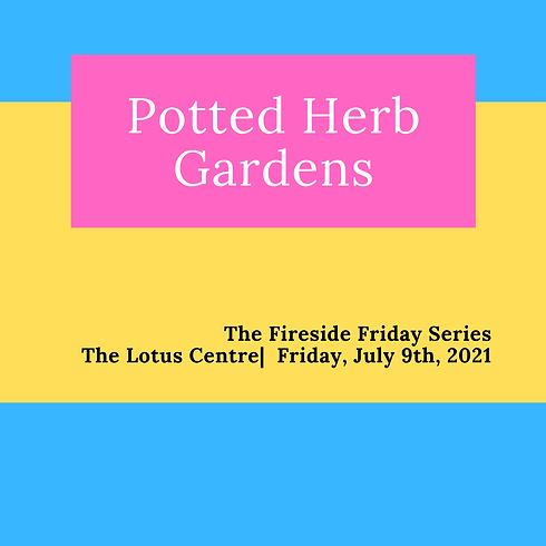 jul 9 potted herb .png