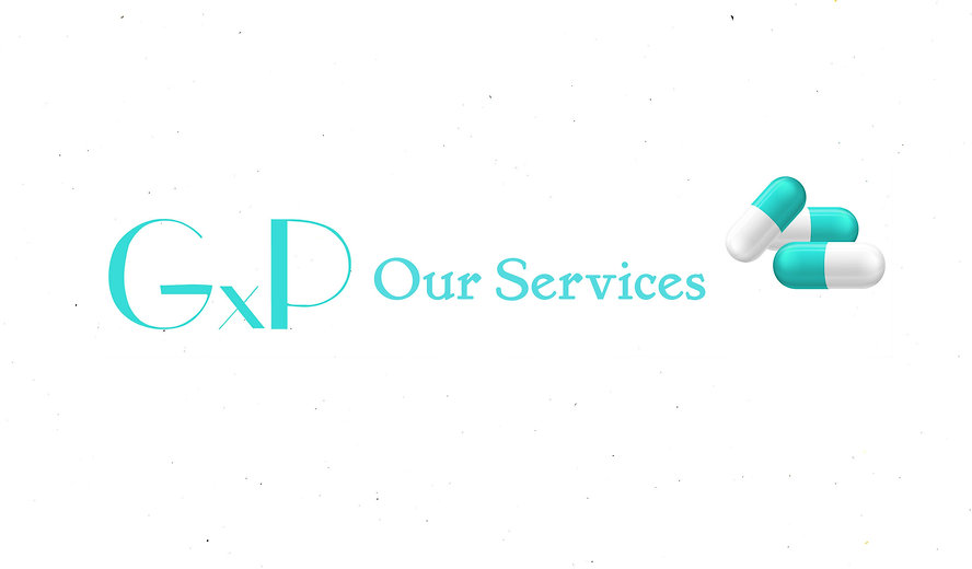 gxp our services.jpg