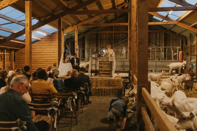 T+M | Boerderij bruiloft | Trouwen in een geitenstal