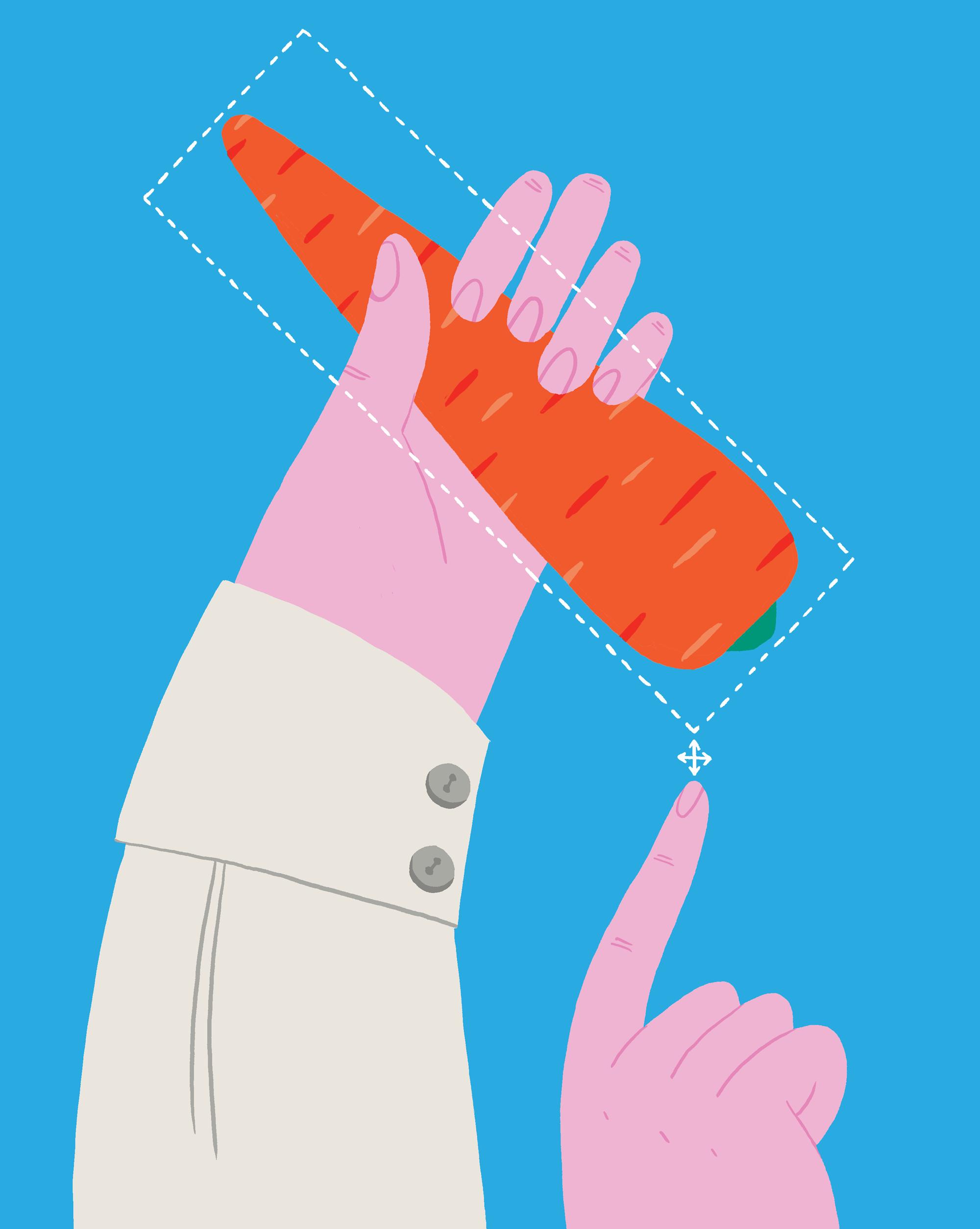 pf-porkkana