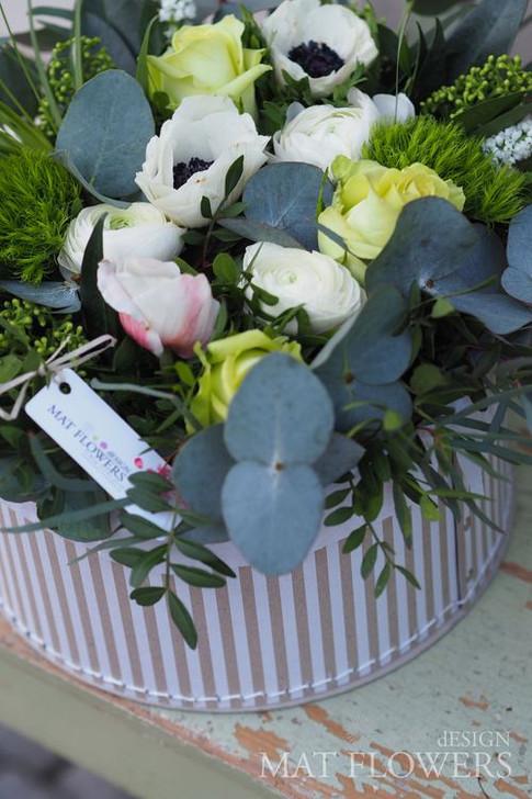 kvetinove_krabice_0138.JPG