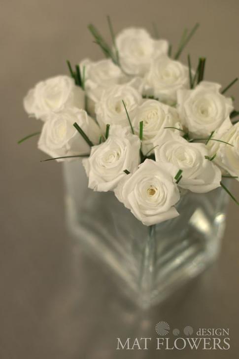 kvetiny_stabilizovane_0216.jpg