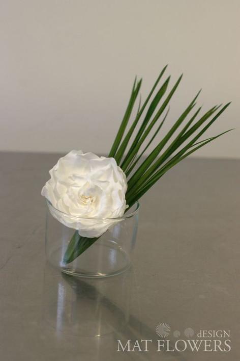 kvetiny_stabilizovane_0237.jpg