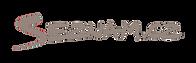 seznam_logo.png