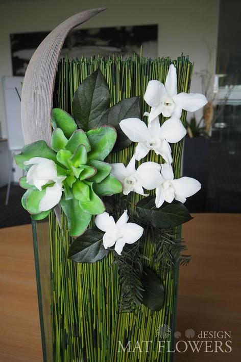 kvetiny_stabilizovane_0215.JPG