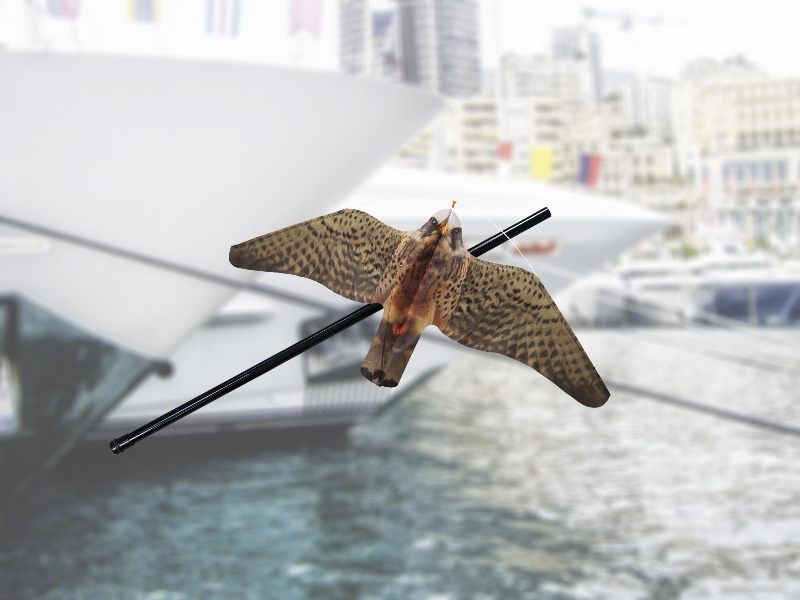 StopGull Falcon