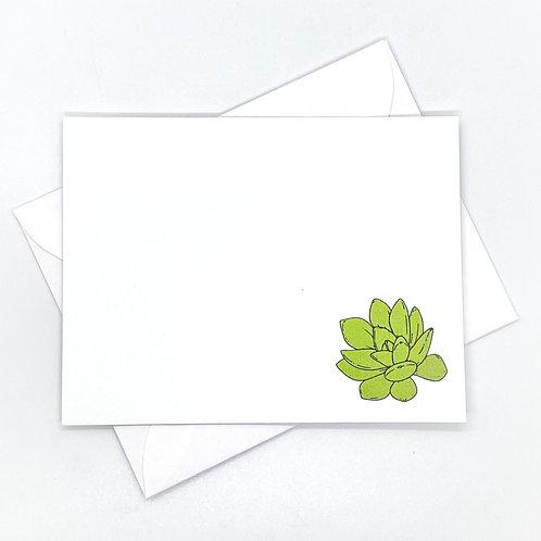 vibrant succulent (set of 6)