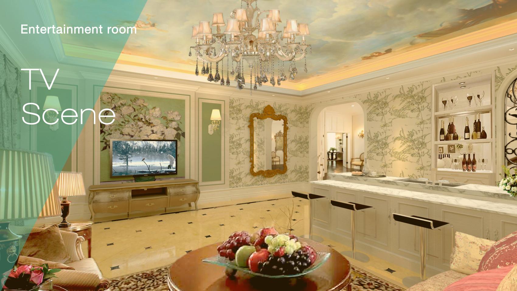 House Entertainment room 2.jpg