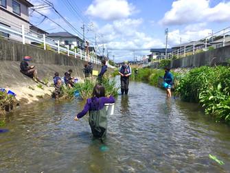 ウォッ! 発見がいっぱい。浜松魚部と川で遊ぼう!