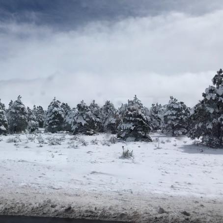 Summer Snow (May 21 - 27, 2019)