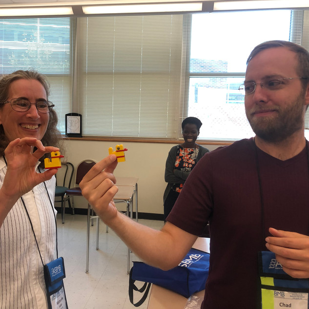 LEGO Serious Play Organizational Workshop Training with Mary Poffenroth