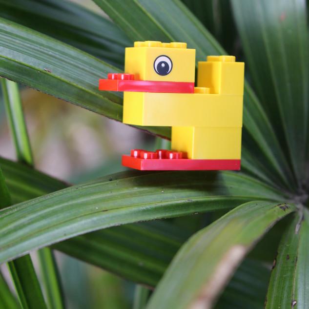 LEGO Serious Play Organizational Workshop Training Duck