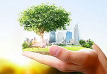 Проведення екологічного аудиту підприємс