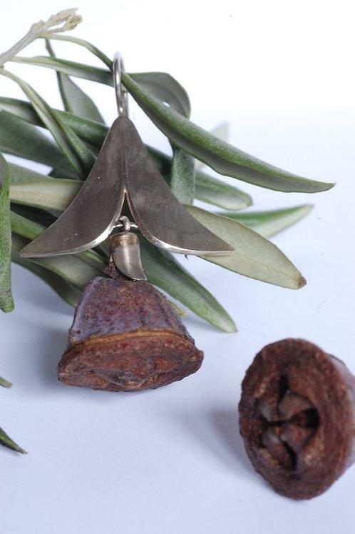 Ohrhänger Eukalyptus