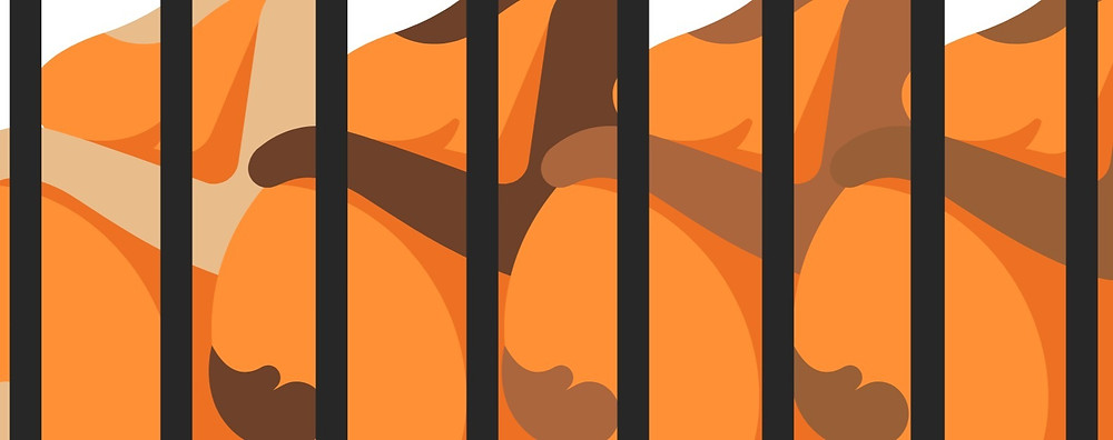 Graphic of pregnant women in orange jumpsuits behind bars