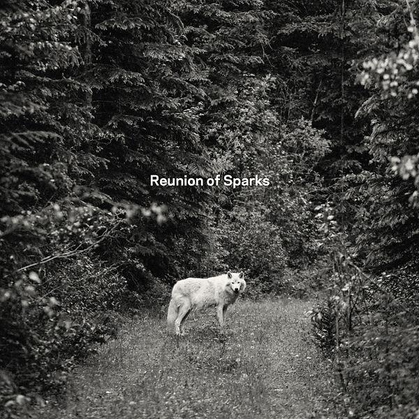 MS_ROS_Cover_Album.jpg