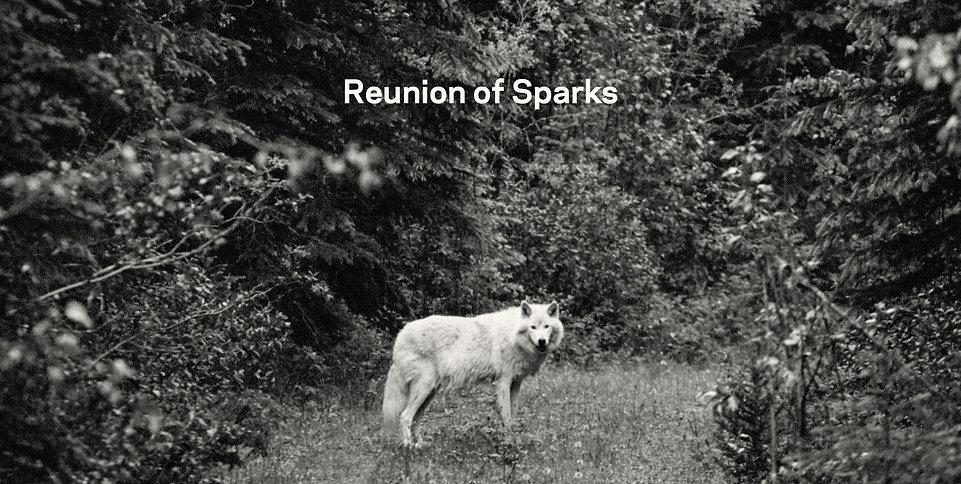 Reunion of Sparks Horizontal crop.jpeg