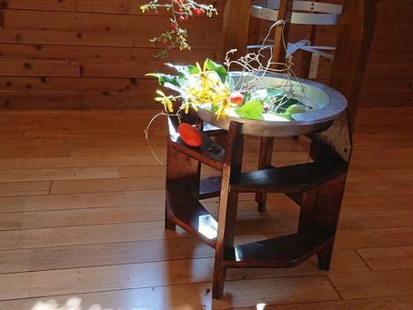 植物で空間プロデュ-ス