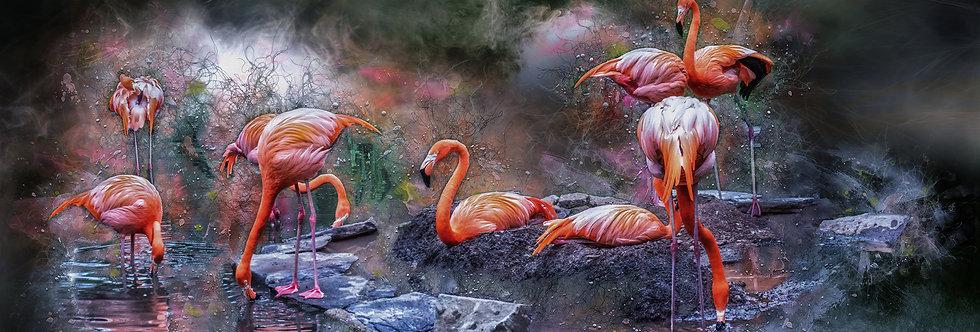 Flamingo Gathering