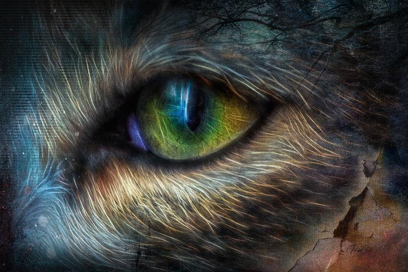 Myst's Eyes