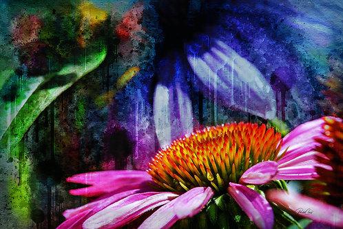 Echinacea Painting
