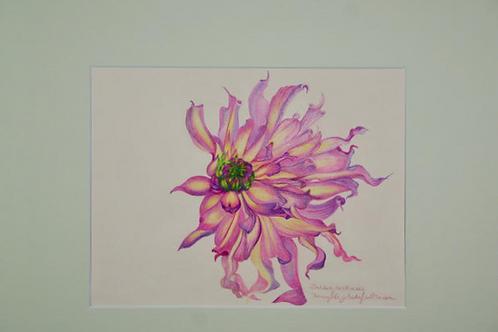 Dahlia by Nancy Elizabeth Saltsman
