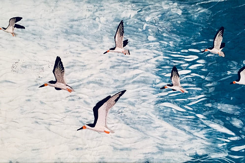 Skimming the Surface by Jody Beth Wigton