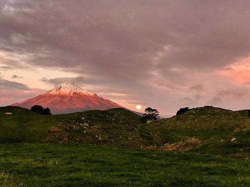 Mt. Taranaki New Zealand by Molly Cusick