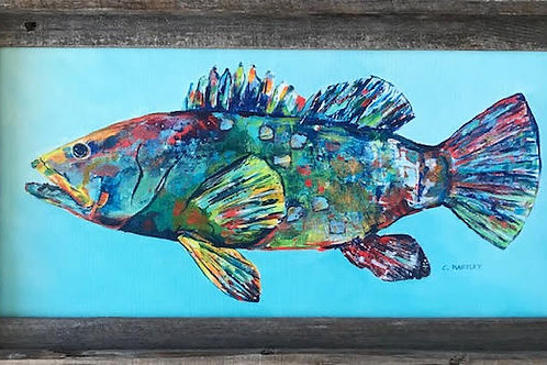 Grouper by CarolHartley