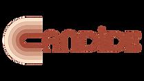 Logo-candide-couleur-texture.png
