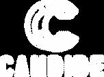 Logo Candide Blanc