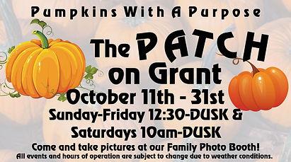 pumpkin patch 2-001 copy.jpg